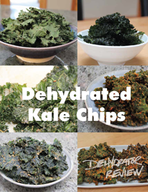Dehydrated Kale Chips Book