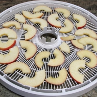 Step 4 - Place on dehydrator trays