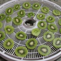 Step 3 - arrange kiwi on dehydrator trays