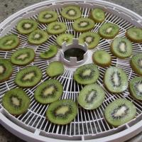 Step 3 - Place kiwi with skin on dehydrator trays