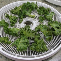 Step 3 - Place on Dehydrating Trays
