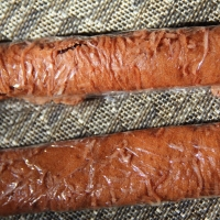 Fruit leather rolled up ready for a hike