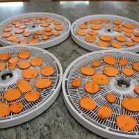 Step 6 - Place on dehydrator trays