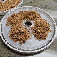 Step 4 -  Spoon on plastic Dehydrating trays